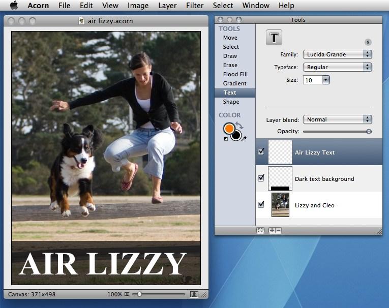 Acorn 4.3.1.8502 Mac software screenshot