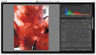 Adobe Lightroom 5.6 Mac software screenshot
