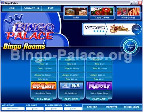 Bingo Palace 3.2.1 software screenshot