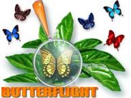 ButterFlight 2.2 software screenshot
