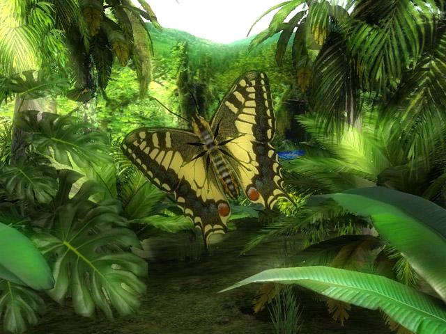 Butterfly Jungle 3D Screensaver 1.0 software screenshot