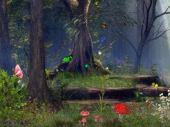 Butterfly Woods - Screen Saver 5.07 software screenshot