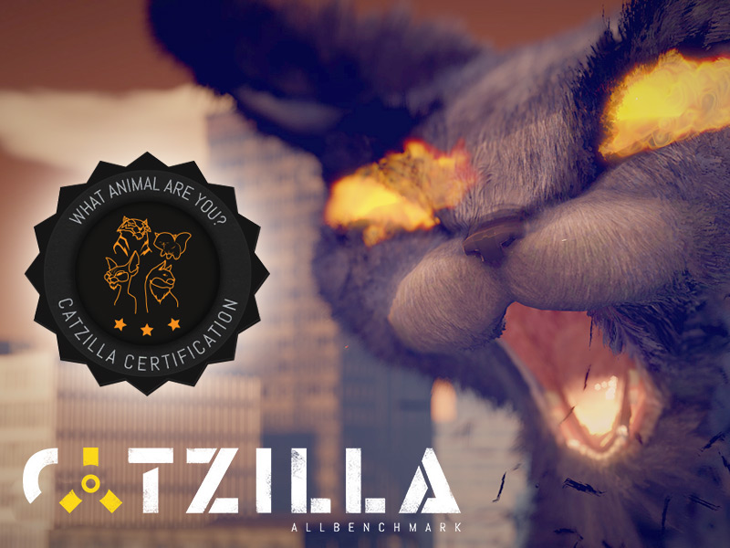 Catzilla 4K software screenshot