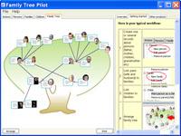Family Tree Pilot 1.04 software screenshot