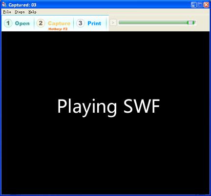 Flash Camera 1.0 software screenshot