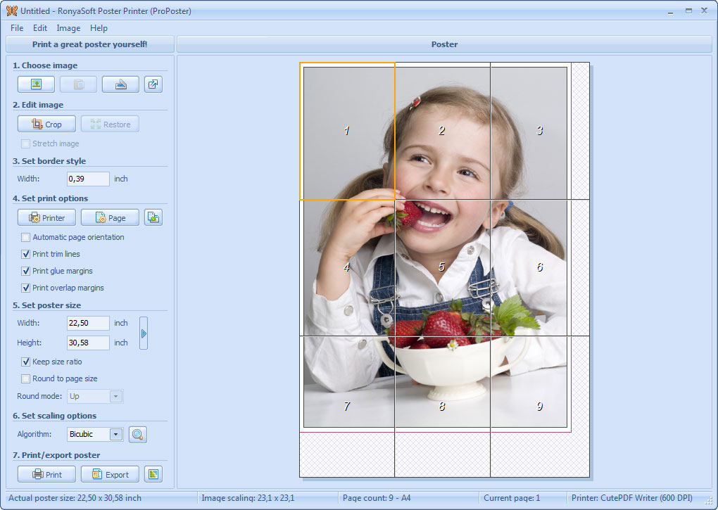 RonyaSoft Poster Printer 3.02.16 software screenshot
